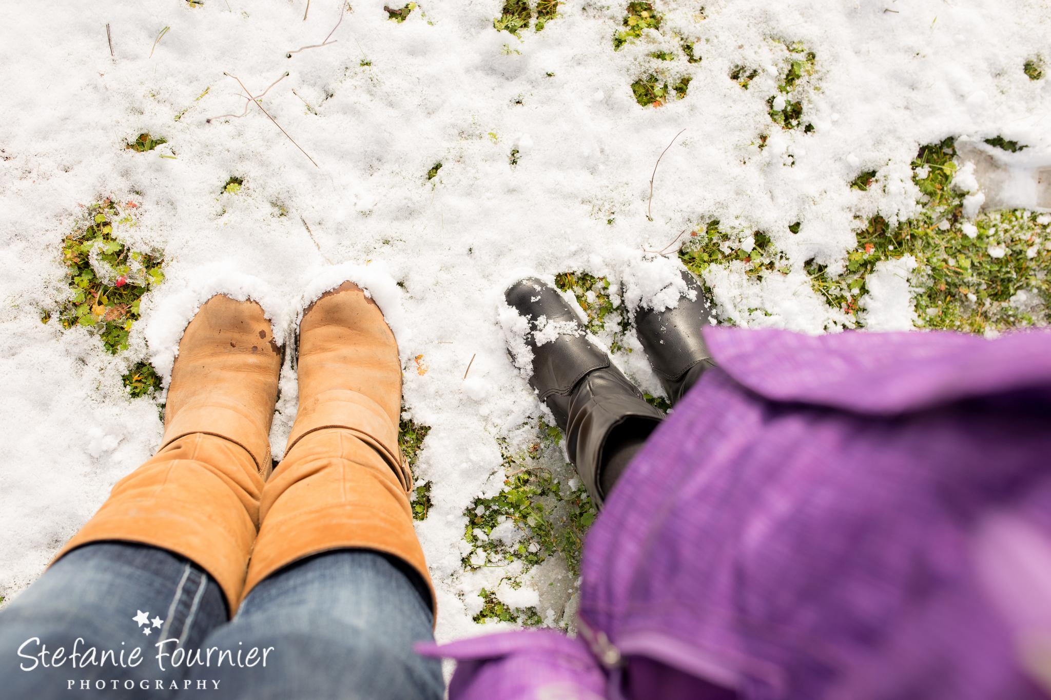 Hatley Castle Winter Photos