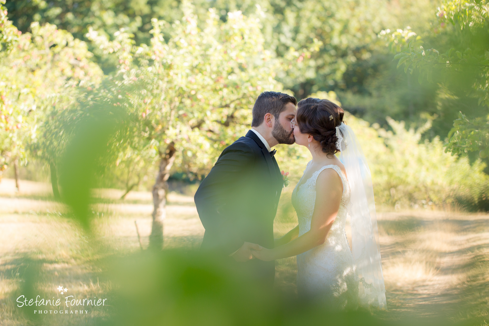 Julie Amp Allan S Wedding At Merridale Ciderworks Stefanie Fournier Wedding Photographer