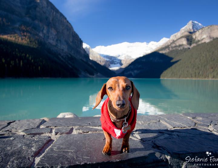 Jasper & Banff [Personal Photography]