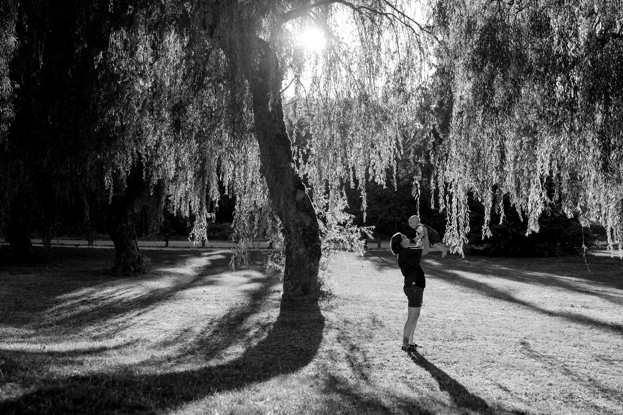 Langley Photographer