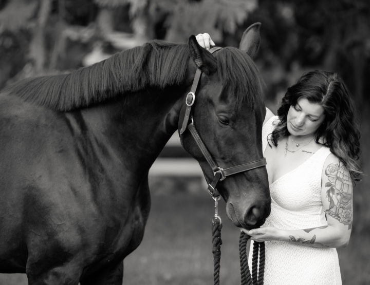 Fire the Horse & her Family [Victoria Photographer]