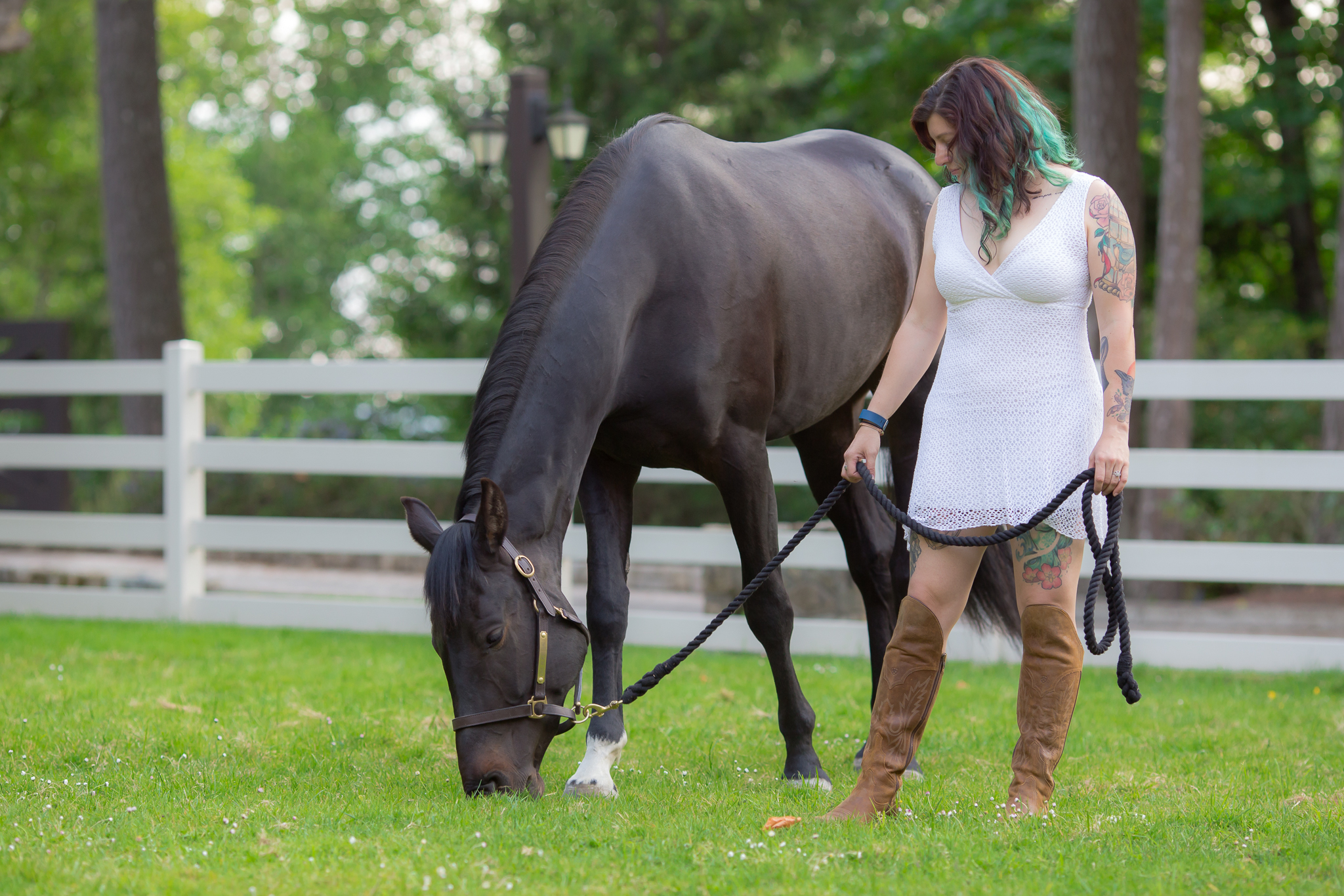 Victoria-Horse-Photographer