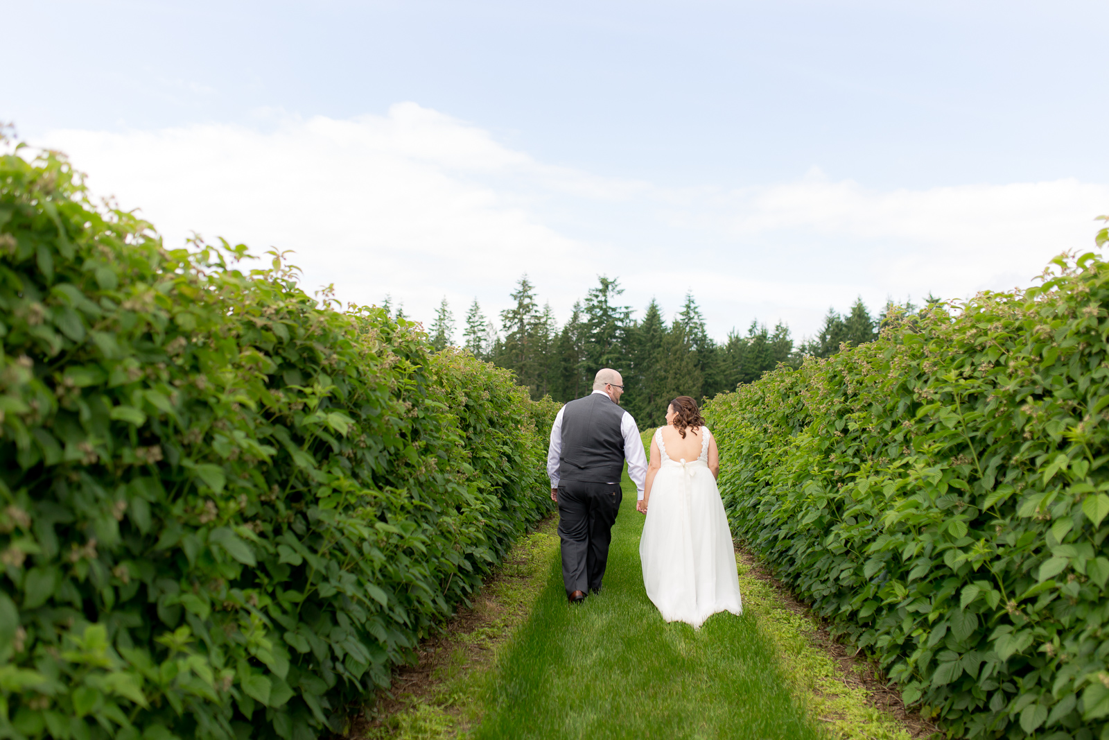 Krause Berry Farms Wedding